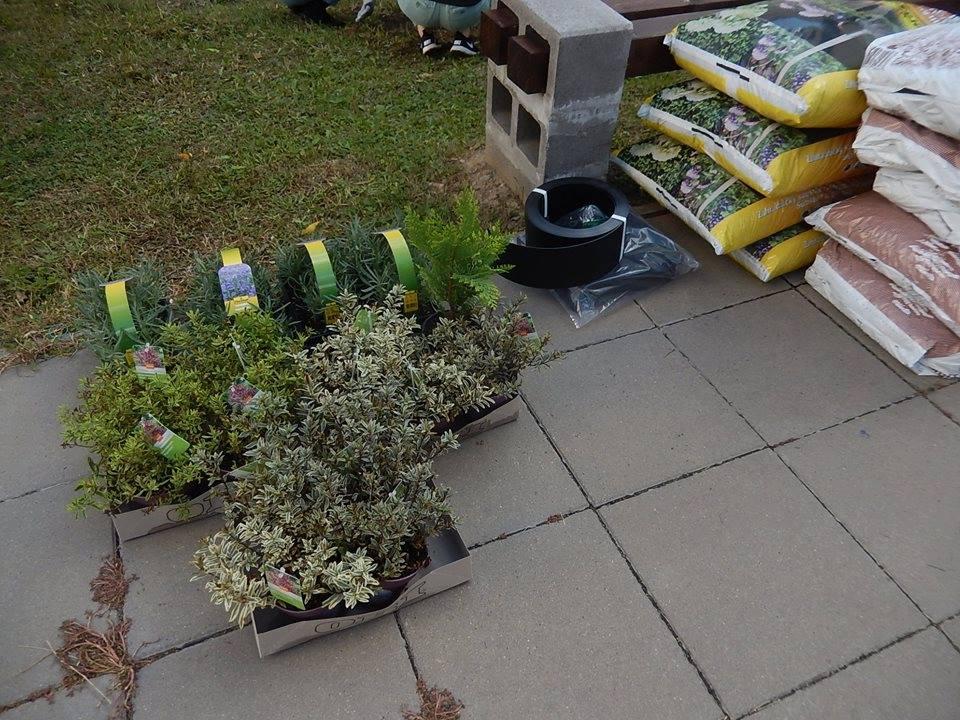 vitalna-tvoriva-zahrada-17.jpg